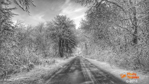 Snowybackroad-01.jpg