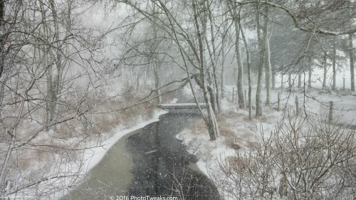 WinterStream1-23-16cr.jpg