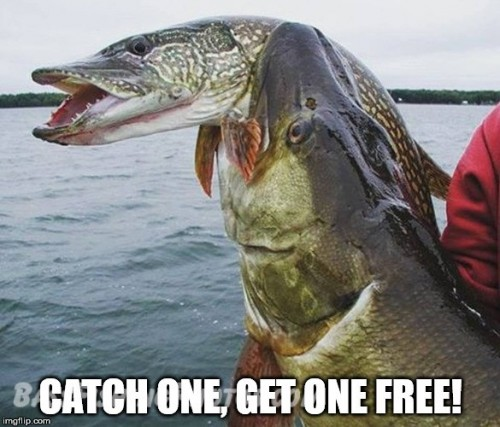 Catch one get one free meme