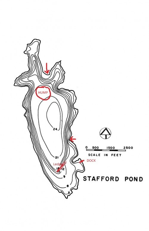 stafford-pond-map-1.jpg