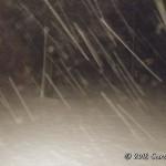 March-7-Snowfall