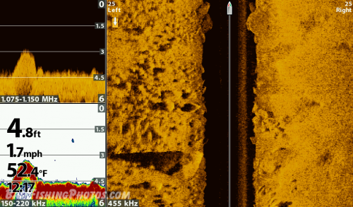 Standard sonar, Down Imaging and Side Imaging
